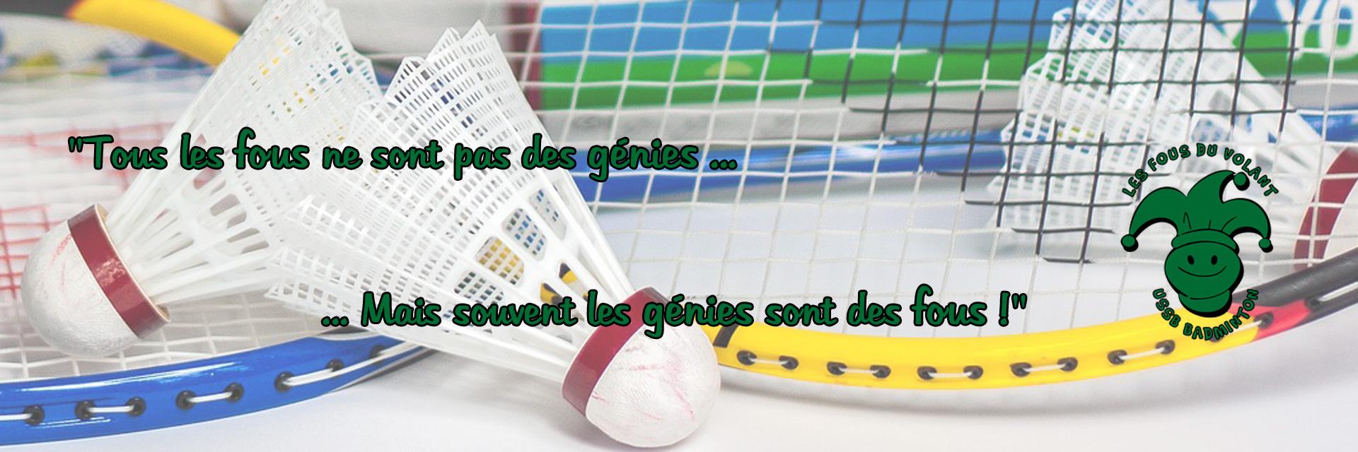 sport_badminton